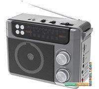 Радиоприемник Ritmix RPR-200 (серый)